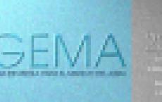GEMA – Guía Española para el manejo del asma